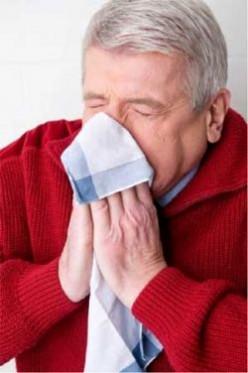 Quiz   Take This Flu or Influenza Quiz