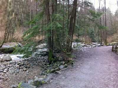 The Mosquito Creek Trail