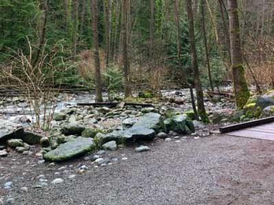 Boardwalk Over Wet Area of Trail