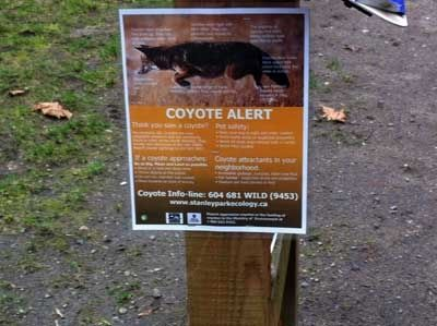 Sign Warning of Coyotes and Bears