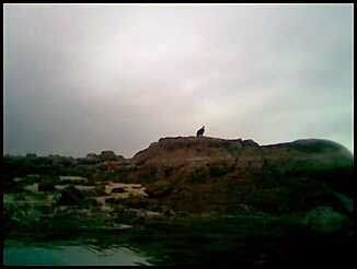Eagle on Rock as Seen From Kayak