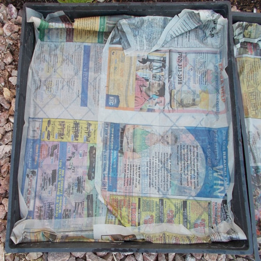 Soak a piece of newspaper in water and gently fit it into the bottom of the tray. This holds in the soil and gives the tray stability.