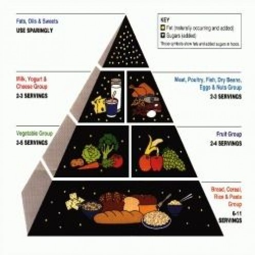 USDA Food Pyramid - Follow the old nutritional standards for your food storage supply. (The USDA does not endorse, approve, or sponsor any product)
