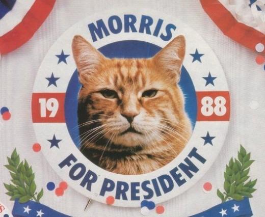 Morris for President