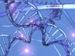 Genetic Engineering: Should it be legal?