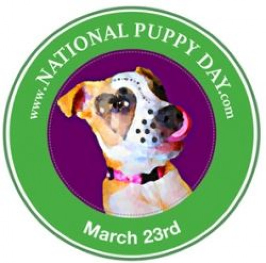 National Puppy Day squidoo favored1