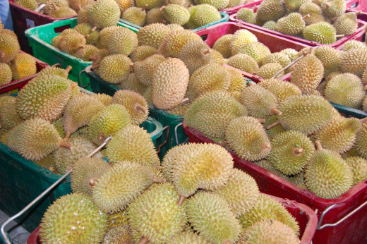 Durians of different shapes, sizes and flavors to tickle your senses