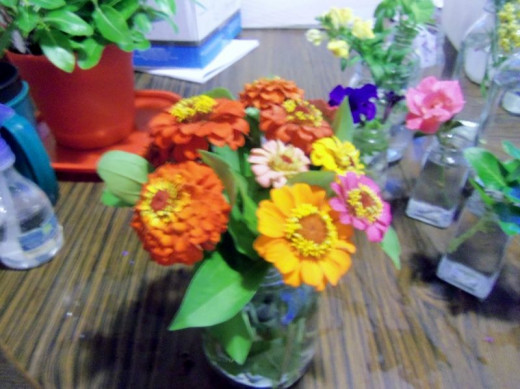 Petite Zinnia Bouquet ...... sorry it's blurry. It took 2nd in its category.