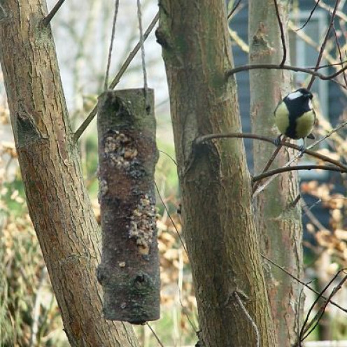 Hanging the wood log bird feeder in a bush or tree