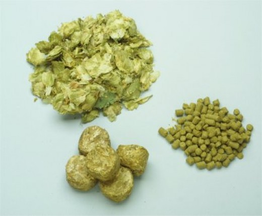 Hops in all the different forms they are used as in brewing.  (image from: www.thebeerkeg.co.za)