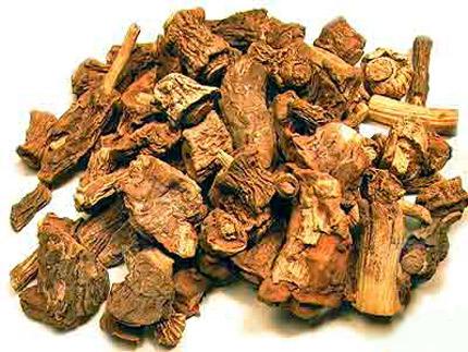 dried sarsaparilla root
