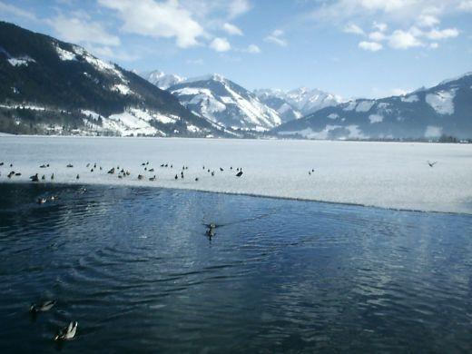The Lake at Zell Am See
