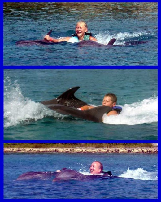 There's nothing in the world like a dolphin ride.
