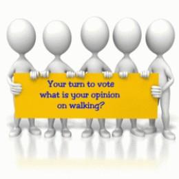 Walking opinion poll vote