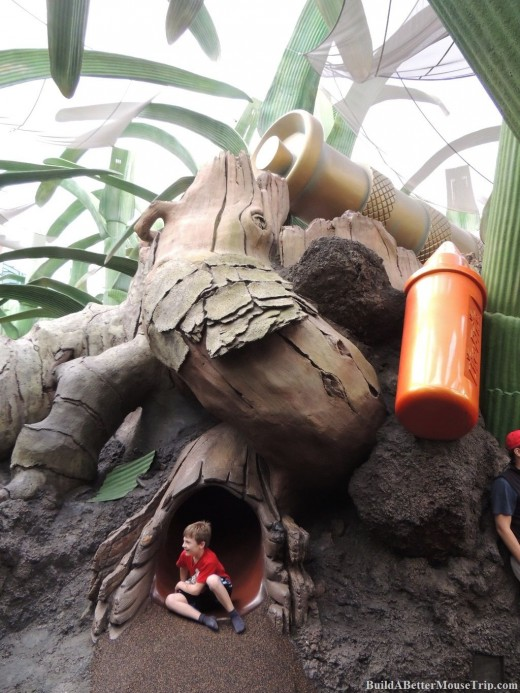 Root Slide at the Honey, I Shrunk the Kids Movie Set Adventure Playground