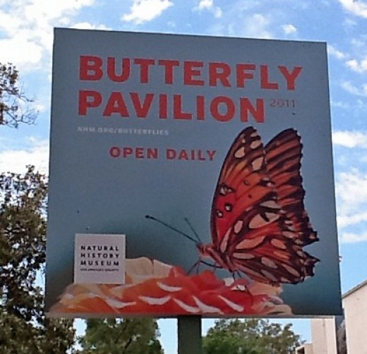 The Butterfly Pavilion, an outdoor exhibit that is a part of the Natural History Museum.