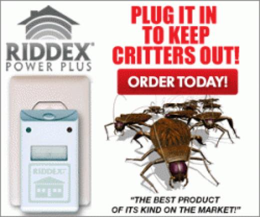 Get Rid Roaches