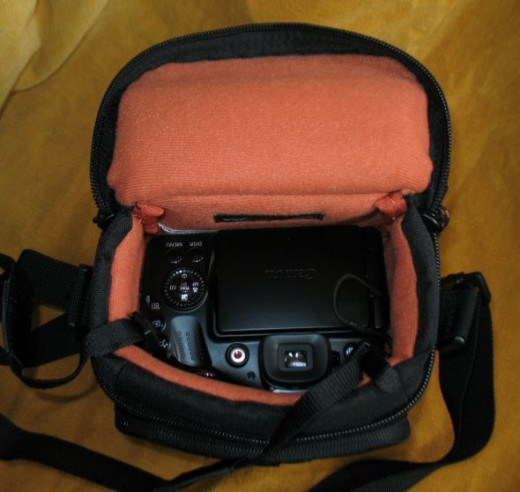 My Canon SX40 HS in the Lowepro Case