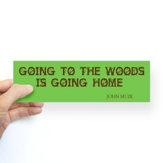 Home is the Woods John Muir