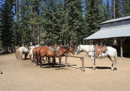 If you enjoy horseback riding, a complete stable is available