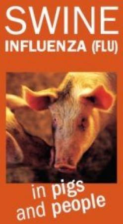 How to Prevent Getting H1N1 Flu or Swine Flu