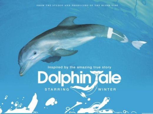 Image from Dolphin Tale on Facebook