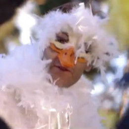 The Duck from The Fox Video by Ylvis. Screen Shot from YouTube.