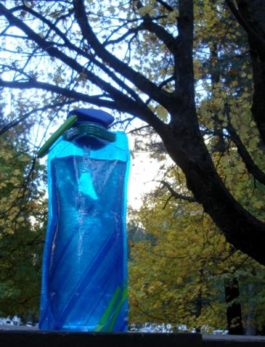 Vapur Bottle in the Fall. Copyright (c) 2013 Kirsti A. Dyer