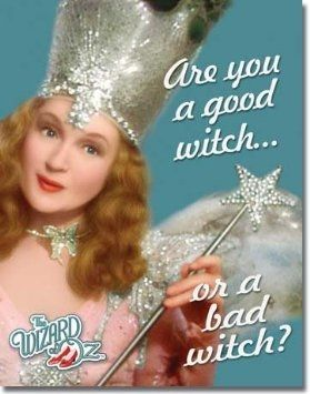 Glinda Is The Good Witch In The Wizard Of Oz.  The Evil Witch Is Called The Wicked Witch.  This Picture Is From Amazon And You Can Find It For Sale On This Page.