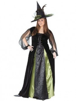 The  Plus Size Witch Costume Is A Great Costume Choice For Halloween