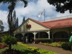 Visit Dole Plantation, Oahu, Hawaii