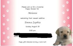 puppy invitation