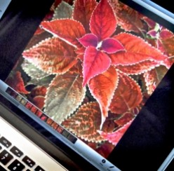"Review of My 15.4"" MacBook Pro With Retina Display - the Perfect Gift"