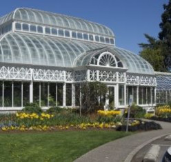 Seattle's Volunteer Park Conservatory An At-home Vacation in a Day