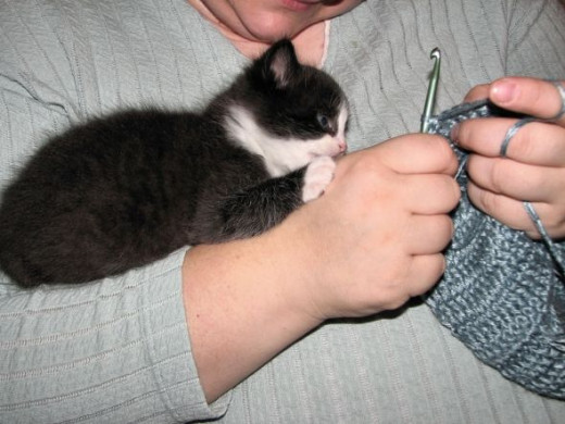 He also liked to tackle my wrists while I was crocheting.