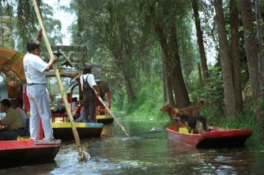 Xochimilco. The Venice of Mexico