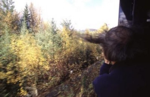 View from the back of the train