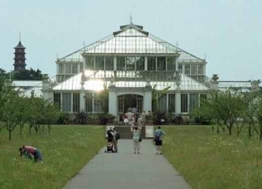 Kew Royal Botanical Gardens Temperate House