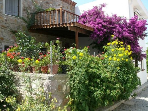 Houses in Bozcada are decorated with flowers