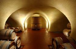 Wine Cave Sonoma