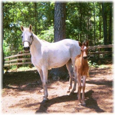 Lady & Baby Rina