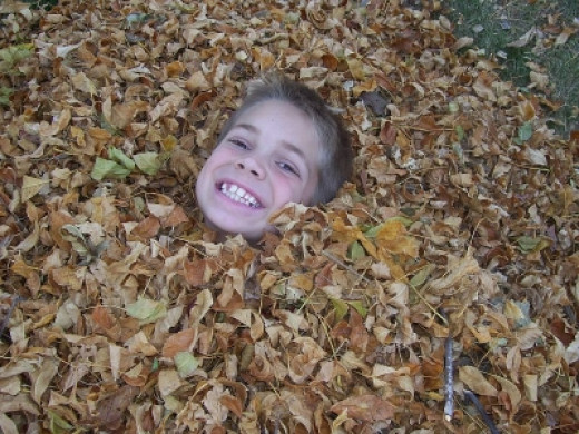 If I Hide in the Leaves, I Won't Have to Rake!