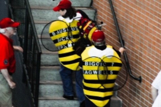 Houston Astros 'Killer Bees' as portrayed by fans.