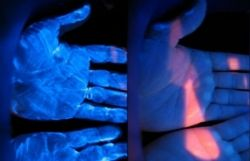 Fluorescent Powder and Gel Supported by CDC
