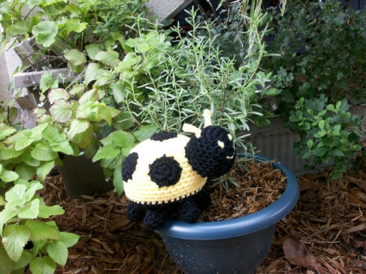 Plush Lady Bug in Yellow