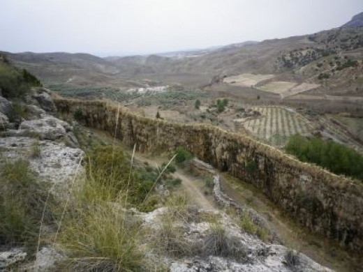 No.4 - The Ancient Irrigation Channel that Grew