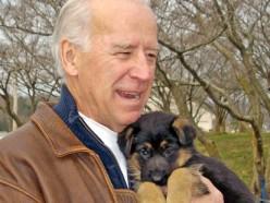 PETA Versus Vice President Joe Biden