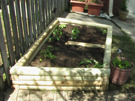 Another view of the raised bed.